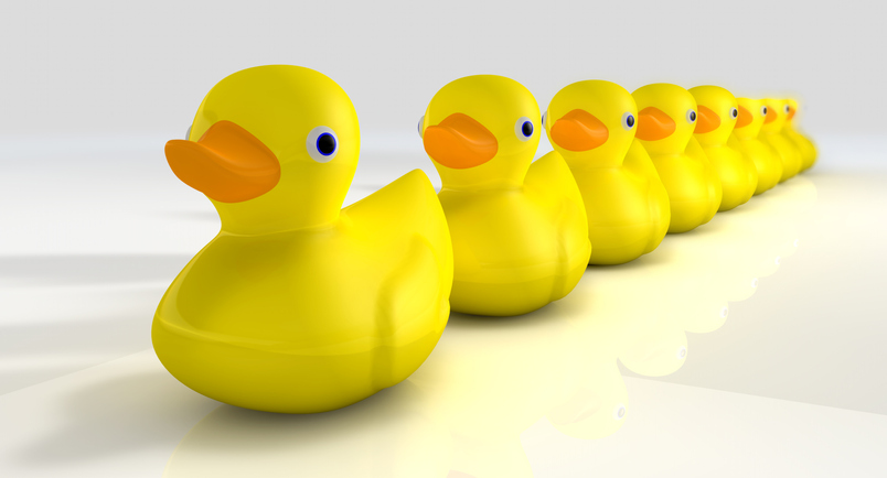 WE PROVIDE SOLUTIONS And keep your ducks in a row.